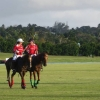 Apes Hill Polo Club