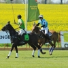 BMW Polo Cup 2015