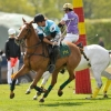 BMW Polo Cup