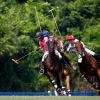 XVI Copa Agua Alta and II Careyes Polo Festival