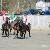 International Arena Polo Test Match 2015
