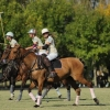 Ladies Autumn Cup 2015 at El Metejon Polo Club
