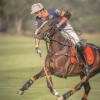 Thai Polo Open 2015